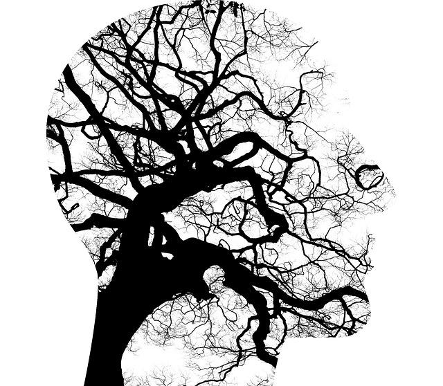 Nel mondo della salute mentale si possono incontrare delle difficoltà nel riconoscere ai vari operatori il giusto ruolo
